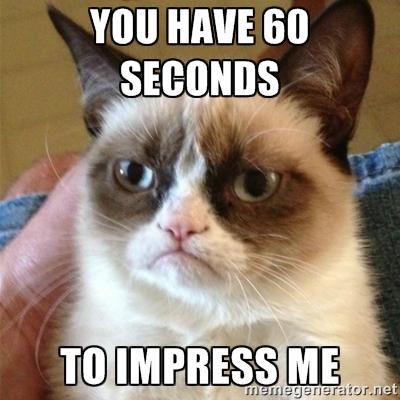 elevator-pitch-grumpy-cat